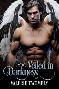 VT_VeiledInDarkness_Ebook Kindle
